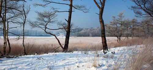 Sneeuw-KBorghouts